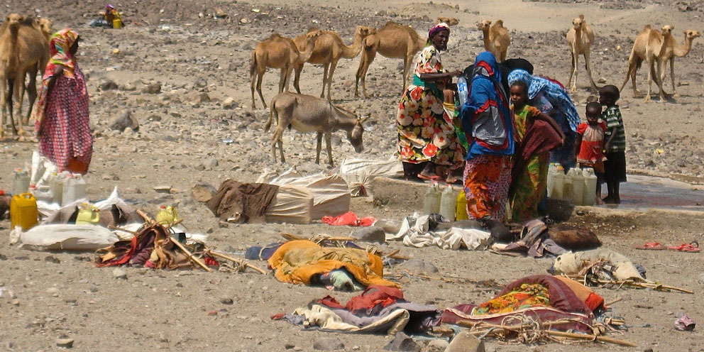 food scarcity in djibouti An overview and descriptions of the severest food crises in africa in the last 30 years.