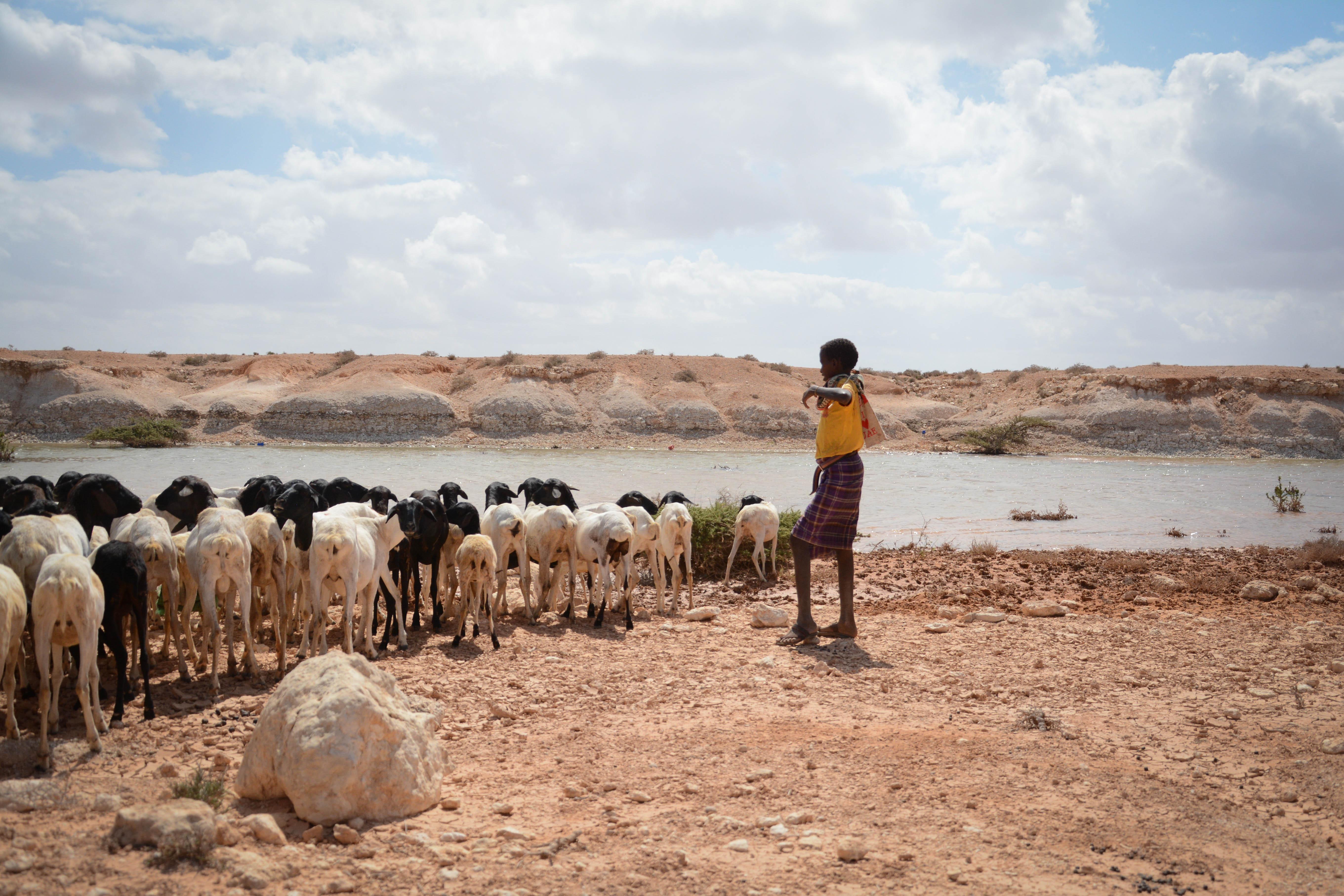 Fn observatorer sands till somalia
