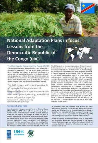 National Adaptation Plans in focus: Lessons from the